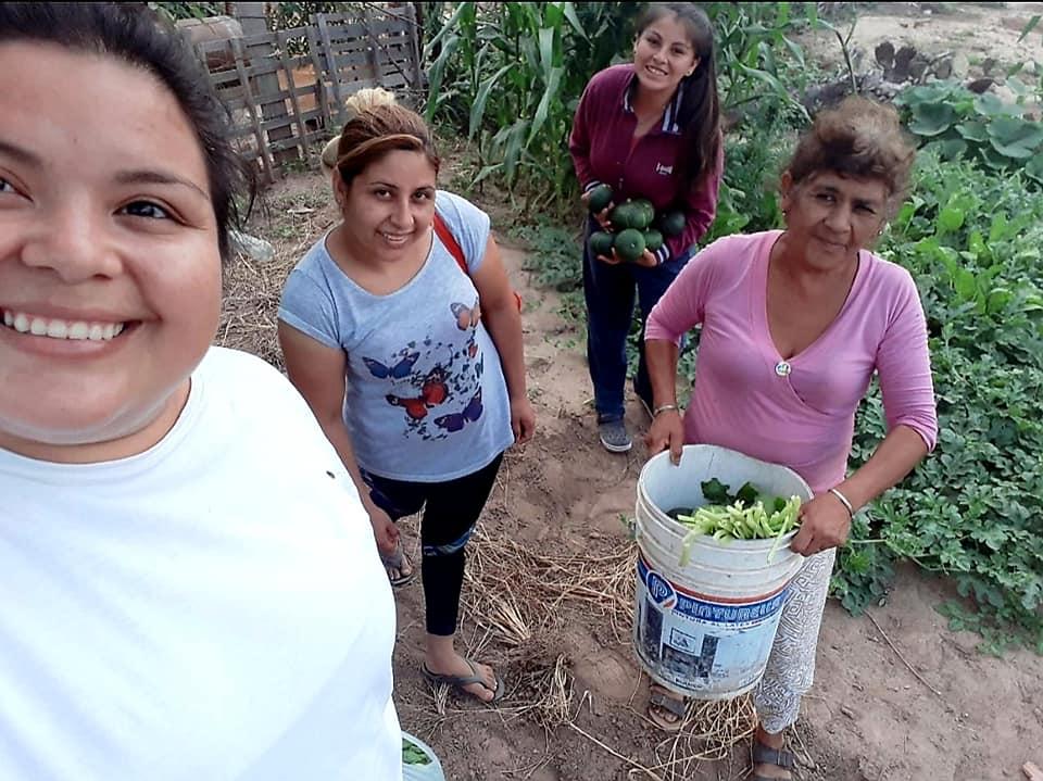 produccion agroecologica