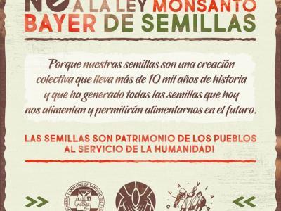 SEMILLAS PATRIMONIO DE LOS PUEBLOS